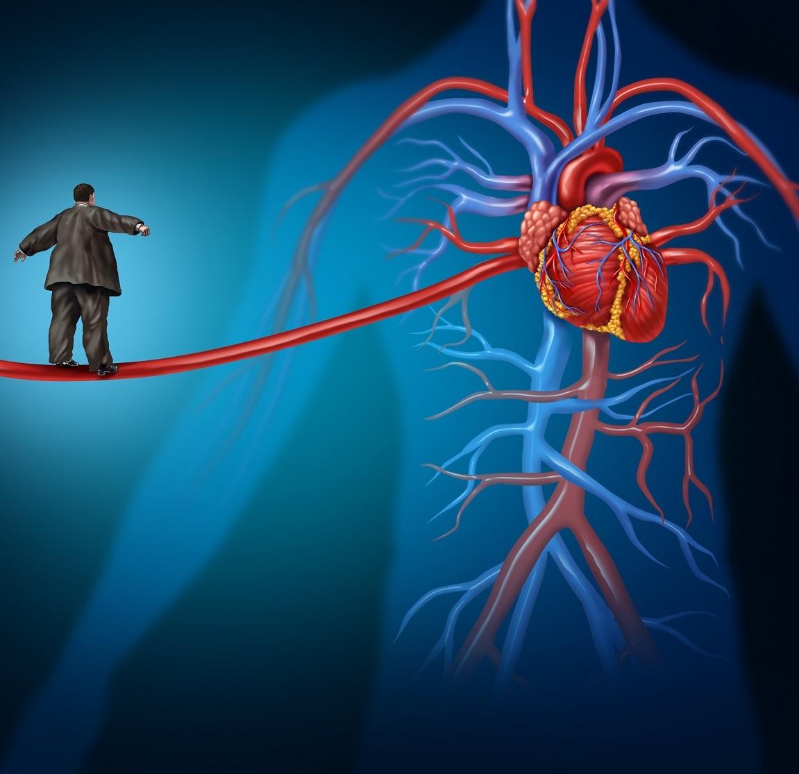 Szív-és érrendszeri rizikófaktor szűrés